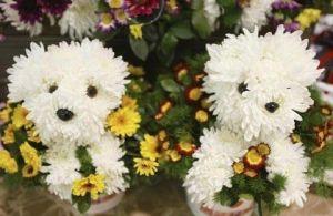 cute_flower2